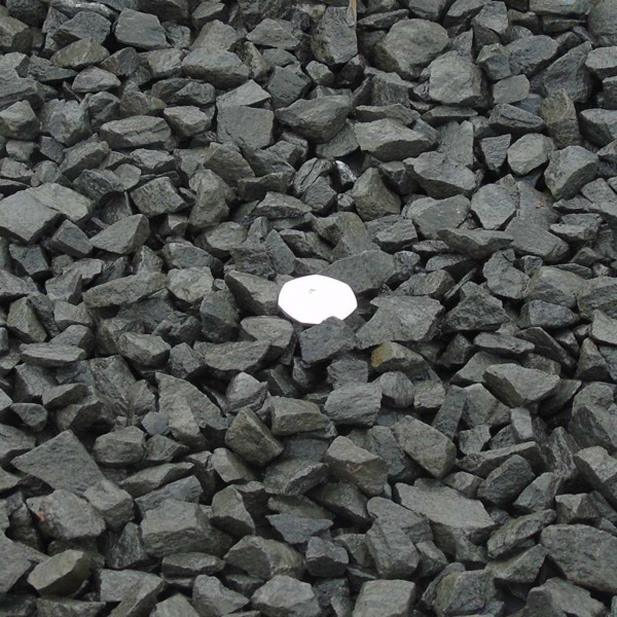 20mm black basalt wet Image by Websters Timber