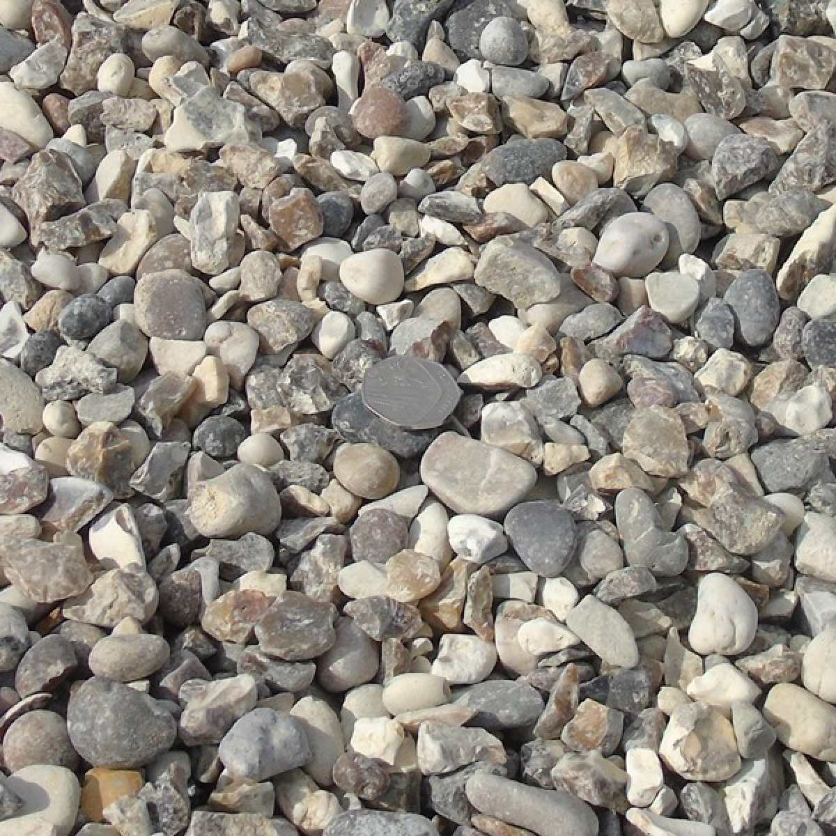 20mm quartz gravel dry Image by Websters Timber