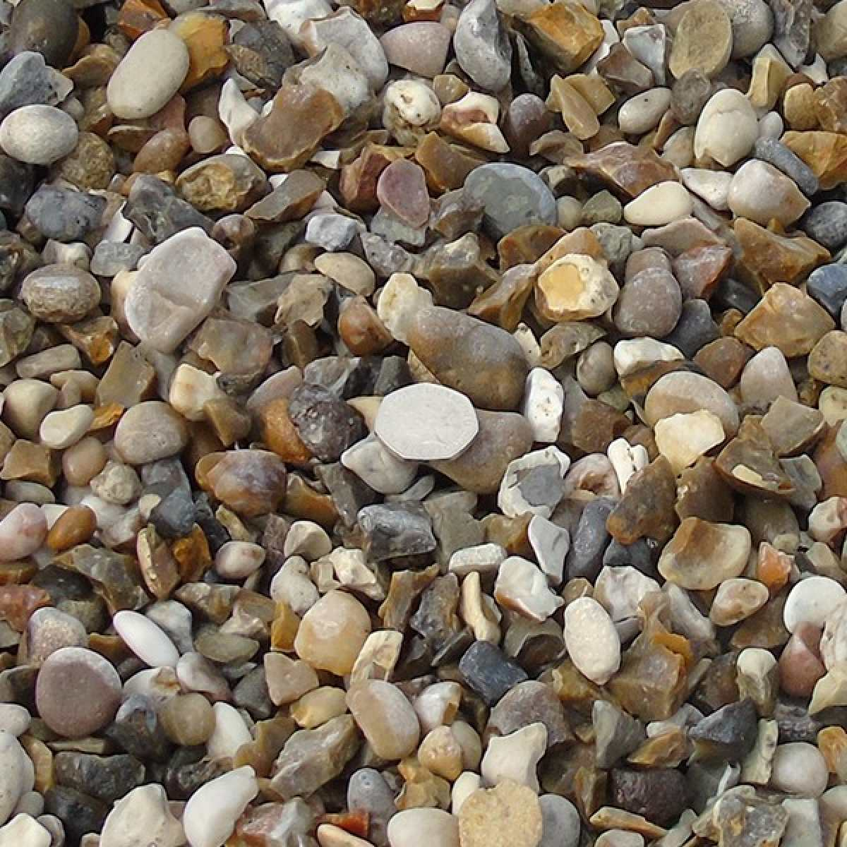 20mm quartz gravel wet Image by Websters Timber